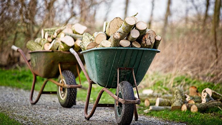 Fotografie: palivové dřevo